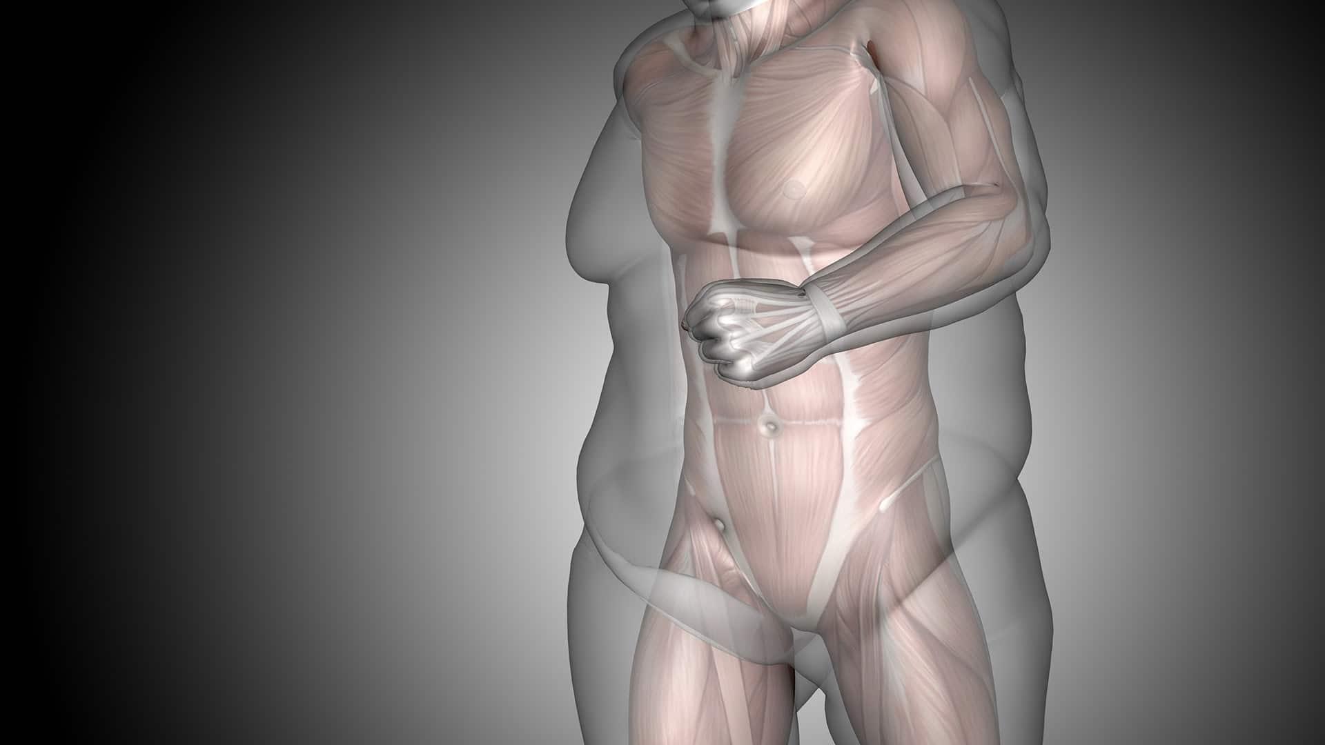 sleeve gastrectomie dr Servajean